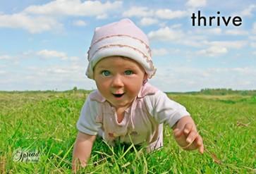 Thrive Postcards (12 per set) Spread the Word  TM