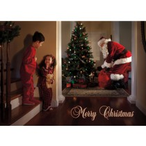 Merry Christmas Cards (25 per set) Spread the Word TM