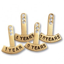 Volunteer Year Tab Attachment