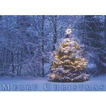 Christmas Card - Merry Christmas (Snow & Tree) (25 per set) Spread the Word TM
