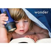 Wonder Postcards (12 per set) Spread the Word  TM